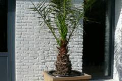 steigerhouten-plantenbak