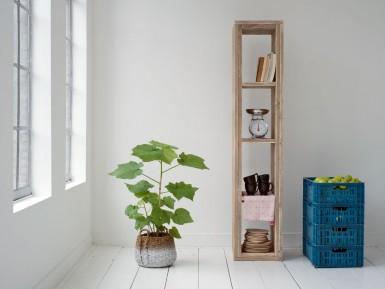 Steigerhouten Boekenkasten