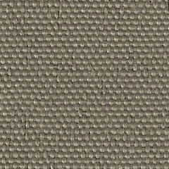 Taupe 161