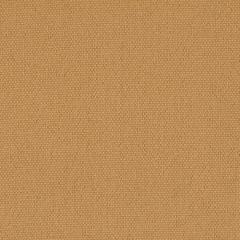 Uni 150 Camel